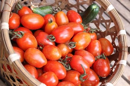 tomato scone1