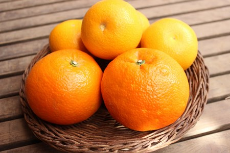 Paddington marmalade4