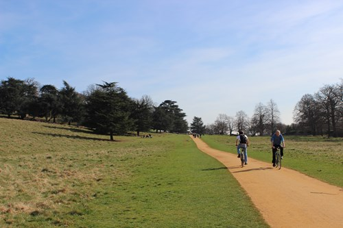richmond park3