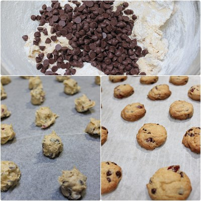 choco chip cookie1