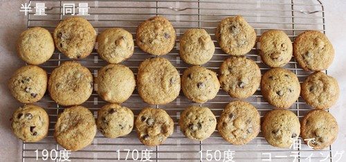 choco chip cookie15
