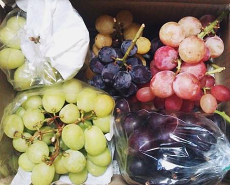 grape-tart7